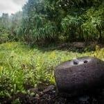 kahanu-garden-piilanihale