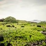 makapu-point-beach-oahu